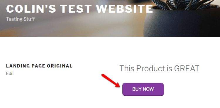 How to Run A/B Tests on WordPress to Improve Your Website