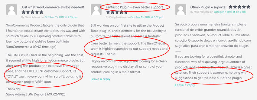 How our WordPress Studio Created a Better Plugin Support System